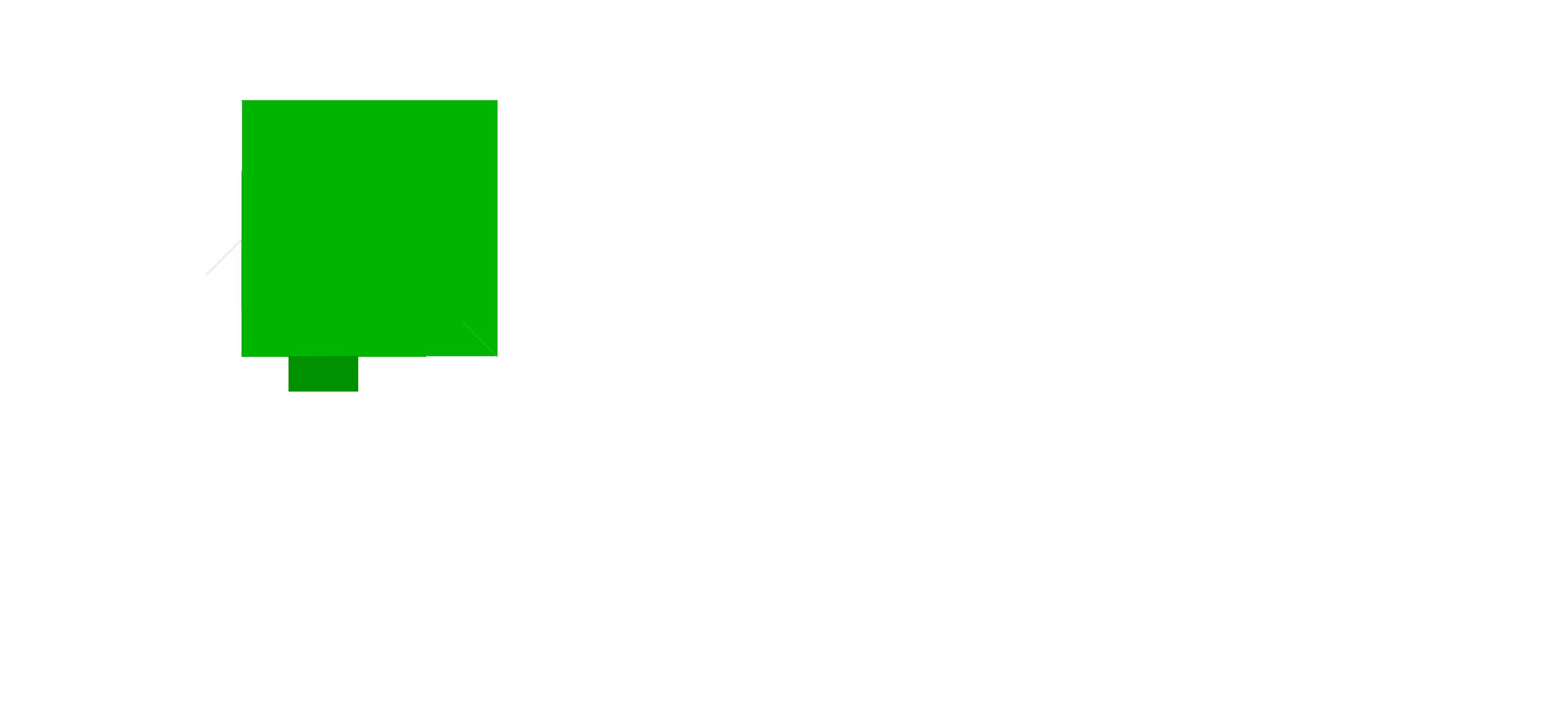 Dietetyk Sportowy Jacek Feldman